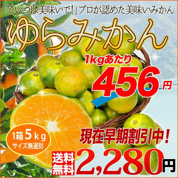 yura2280-top.jpg