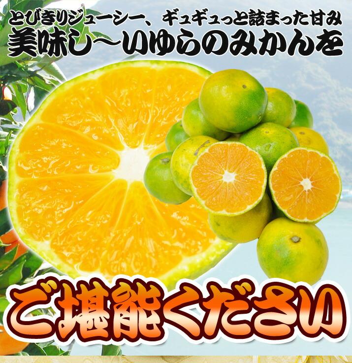 yuramikan-5-new_09.jpg