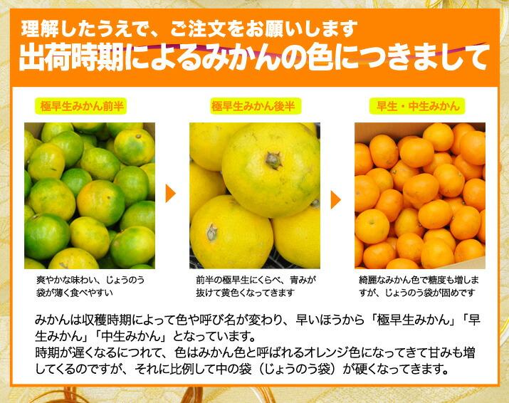yuramikan-5-new_10.jpg
