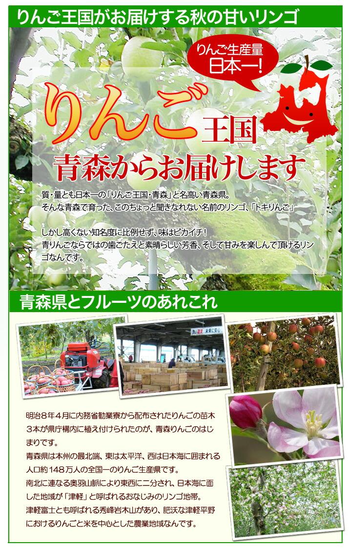 甘くて多汁の青りんご 青森県産「トキりんご」