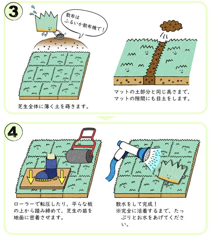 高麗芝マットの植栽方法2