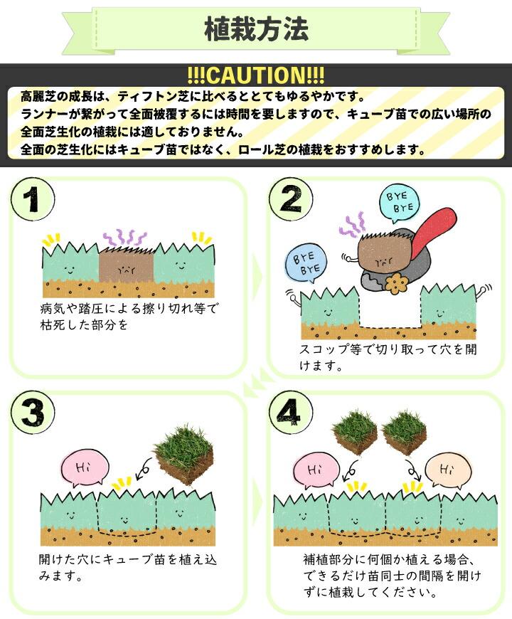 キューブ苗の施工方法1