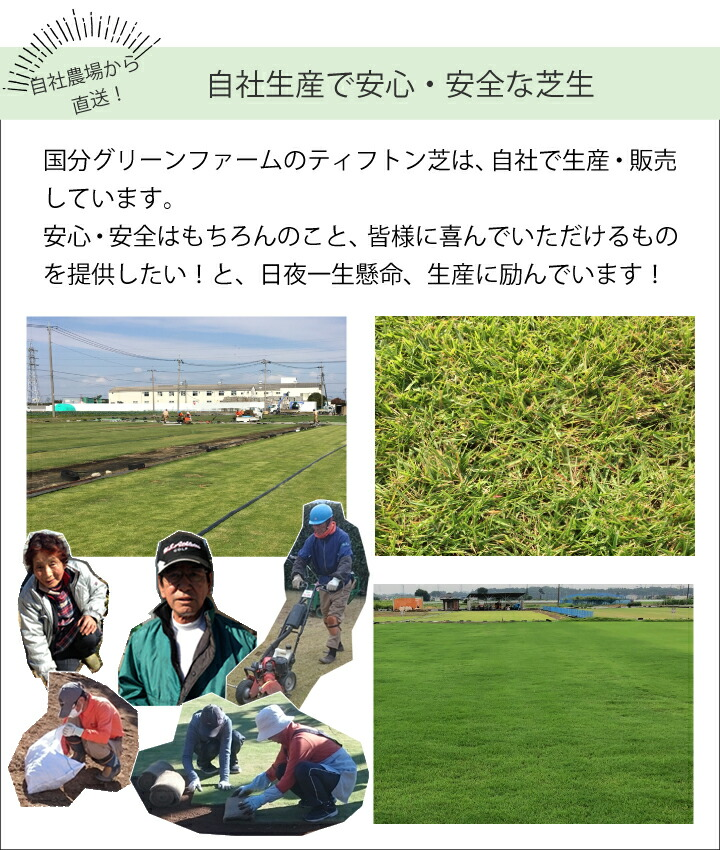 自社生産で安心安全な芝作り
