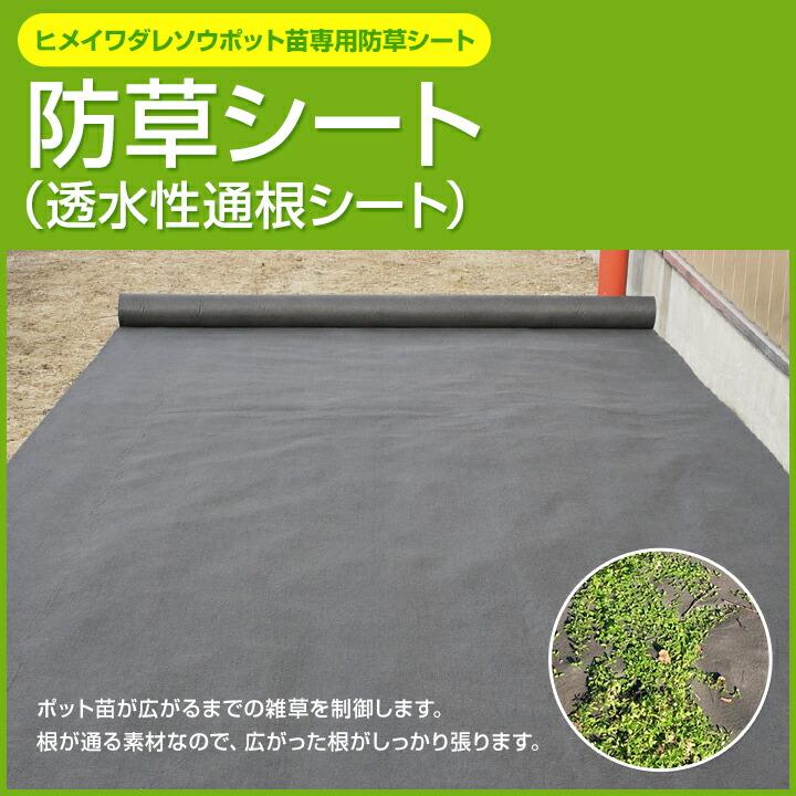 ヒメイワダレソウポット苗専用 防草シート(透水性通根シート)