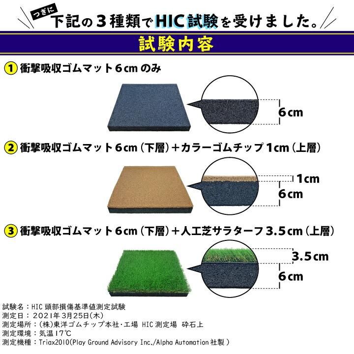 HIC試験内容