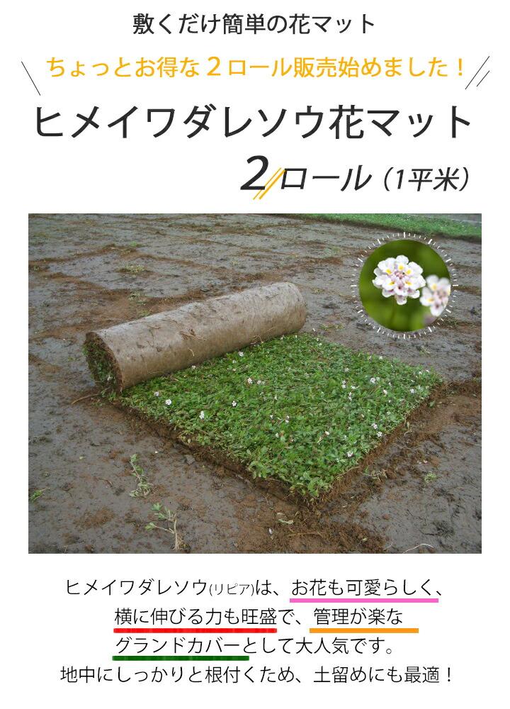 花マット2ロールサムネイル