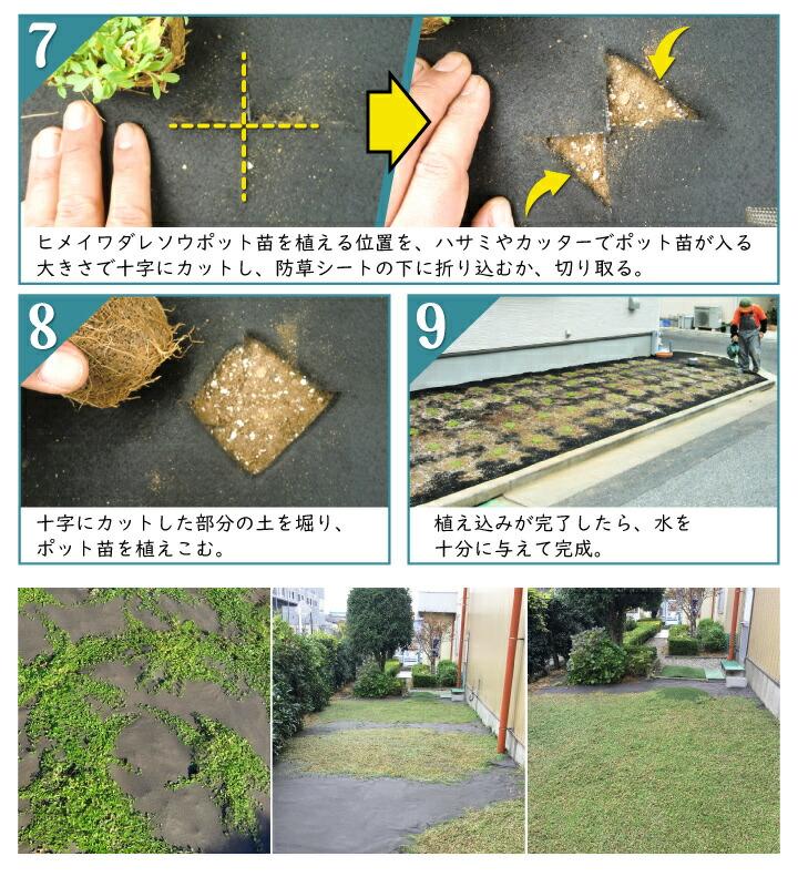 ヒメ専用防草シート使用方法2