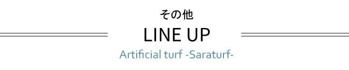 LINE UP表題