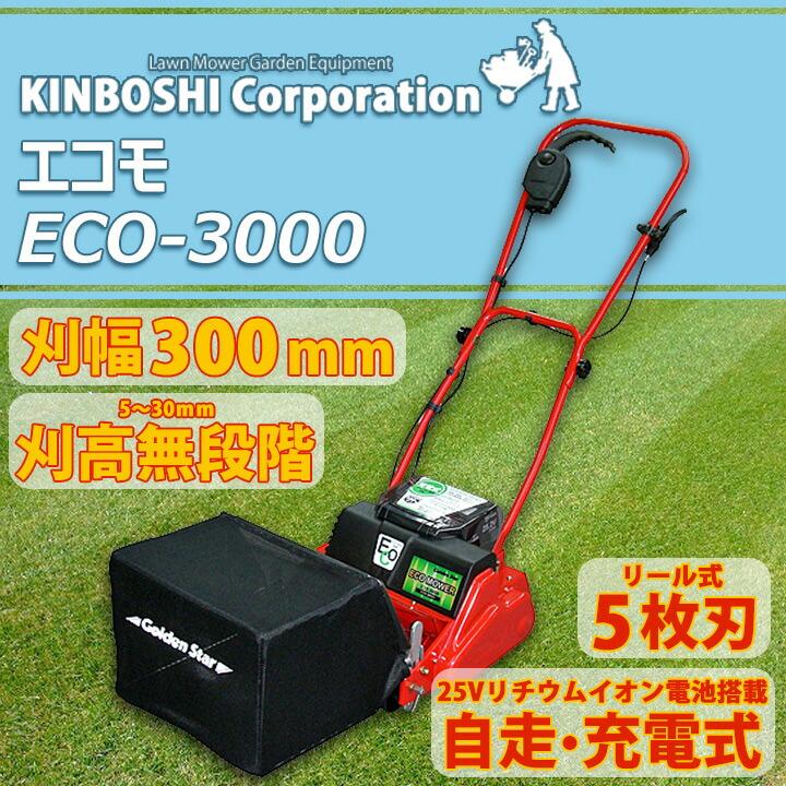 エコモ3000