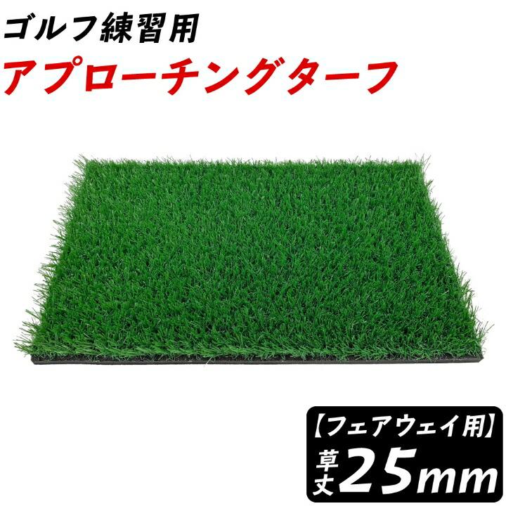 アプローチングターフ(ラフ)草丈25mm