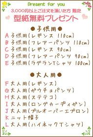 3000円以上型紙プレゼント!