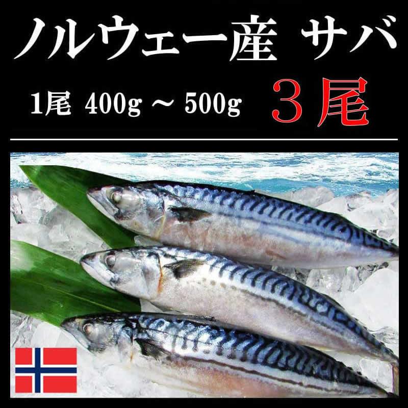 ノルウェー産 サバ 3尾(1尾:400g〜500g)