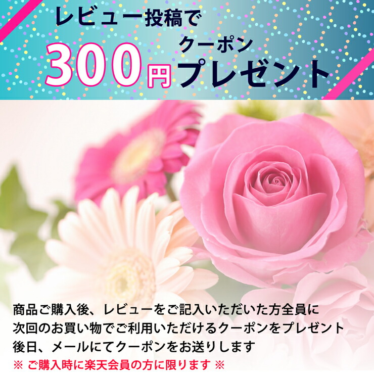 レビュー投稿で300円クーポンプレゼント