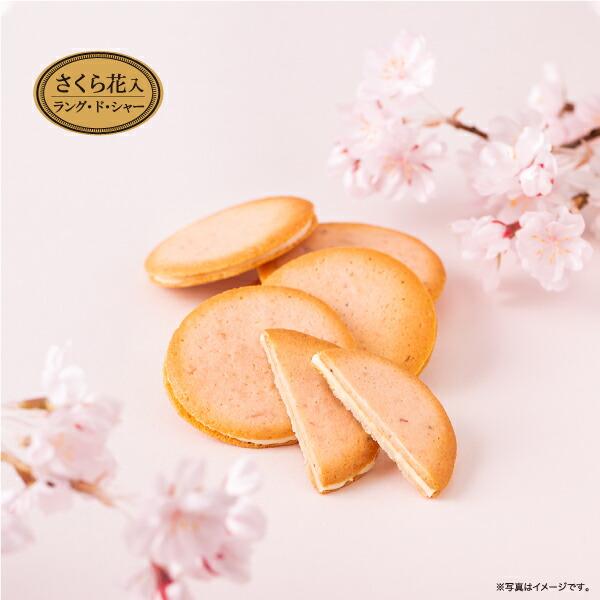 パレ・オ・ショコラさくら風味イメージ