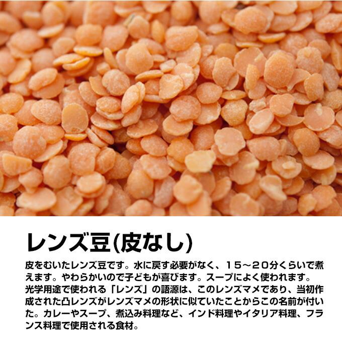 レンズ 豆