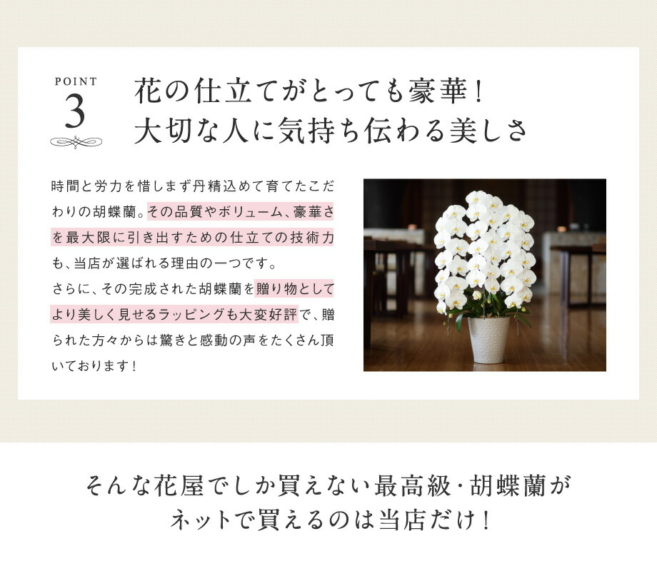 花の仕立て