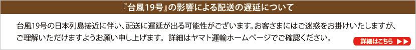 台風19号について