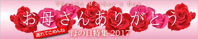 母の日のギフト 母の日のプレゼント スイーツギフト2017
