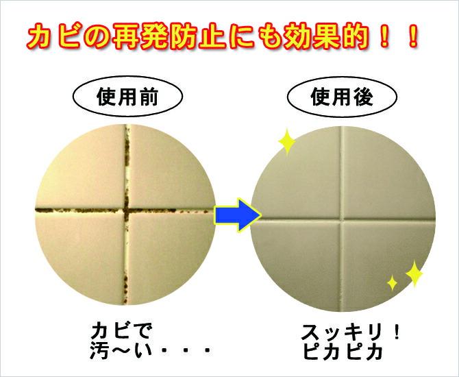 プロ用カビ落とし専用クリーナー-2