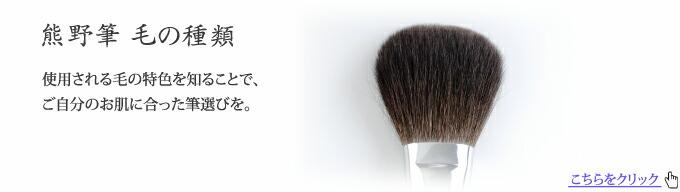 熊野筆の毛の種類