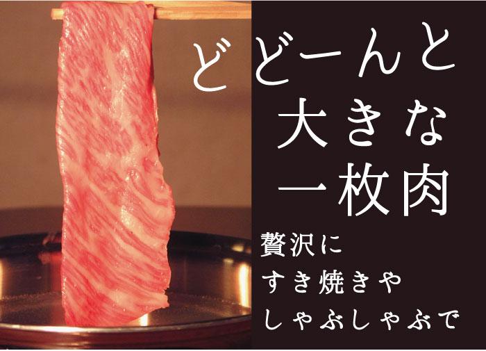 大きな1枚肉