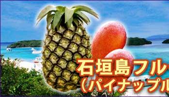 石垣島フルーツセット(パイン&マンゴー)