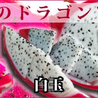 大里産ドラゴンフルーツ白玉