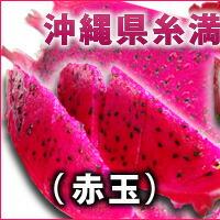 糸満産ドラゴンフルーツ赤玉