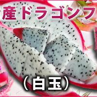 糸満産ドラゴンフルーツ白玉