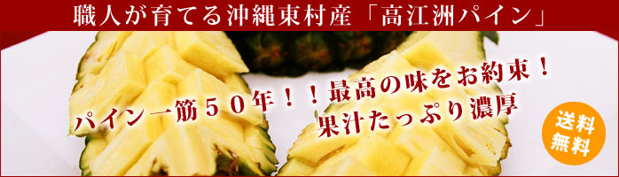 高江洲ハワイ種パイン