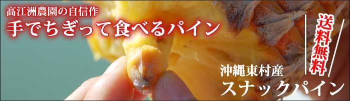 高江洲スナックパイン