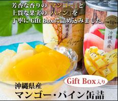 マンゴー・パイン化粧箱