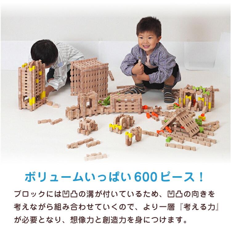 ユークリッド ブロック 600ピース入り木箱ケース | 知育玩具 木製 保育園 幼稚園 積木 つみき 積み木 ミニブロック