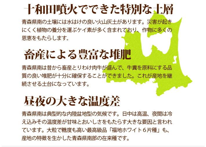 青森県産にんにくの紹介