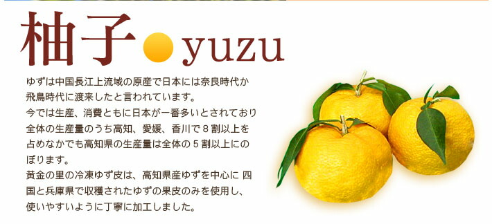 柚子の説明