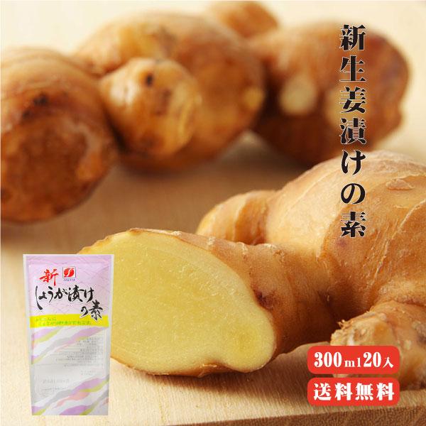 生姜 漬物 新