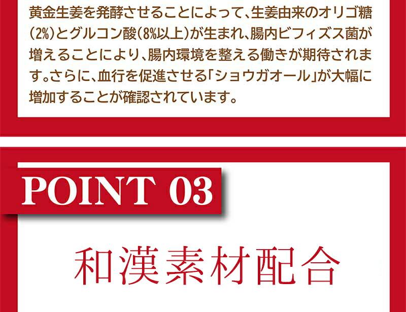発酵生姜02