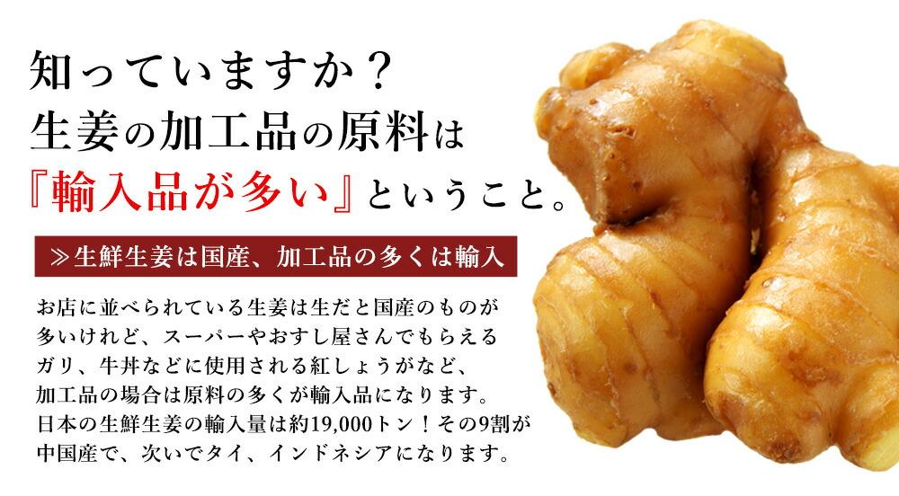 知っていますか生姜の加工品