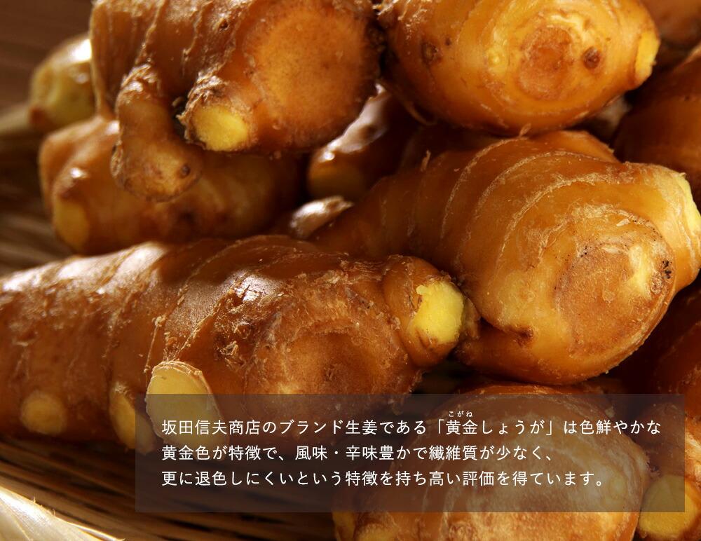 坂田信夫商店のブランド生姜黄金の里