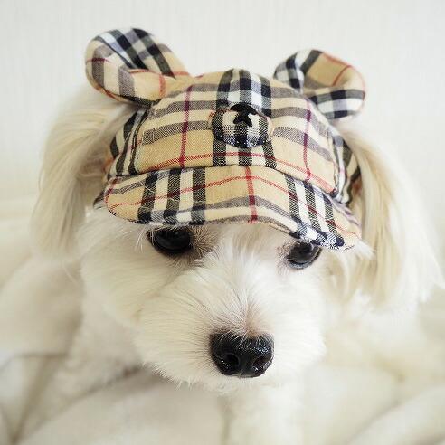 犬の帽子 ガーデンオブエデン 2021AWコレクション