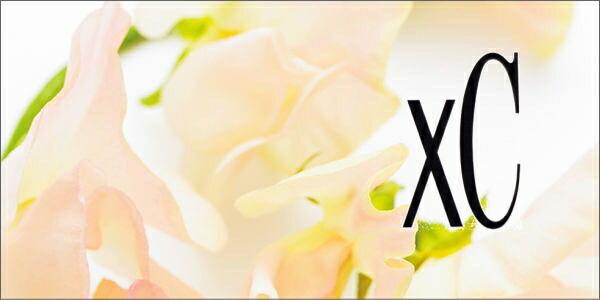 Xc(クロスシー)
