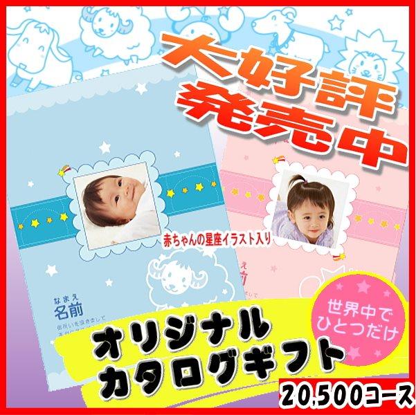 20500円コース