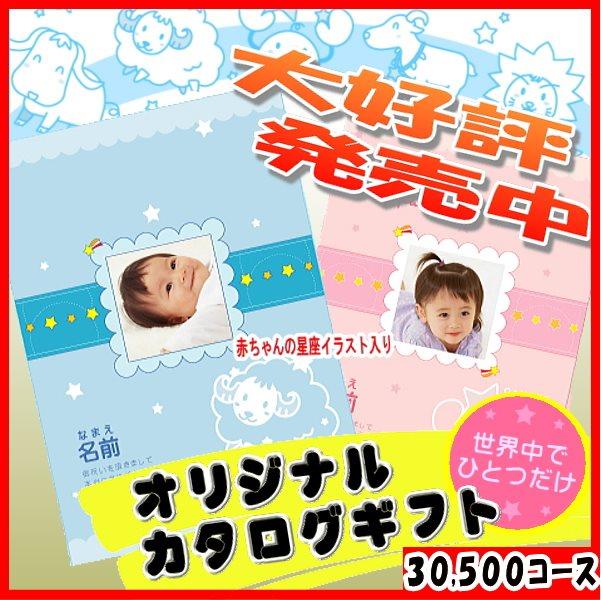 30500円コース