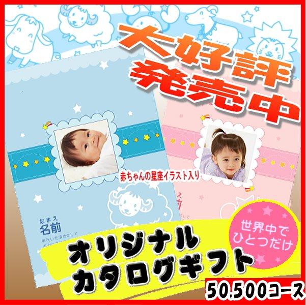 50500円コース