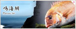 鳴門激流で育った 鳴海鯛(なるみ鯛)
