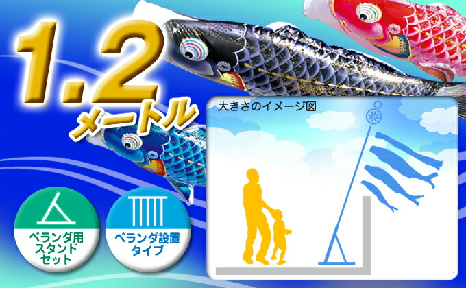 黒鯉のサイズ1.2m