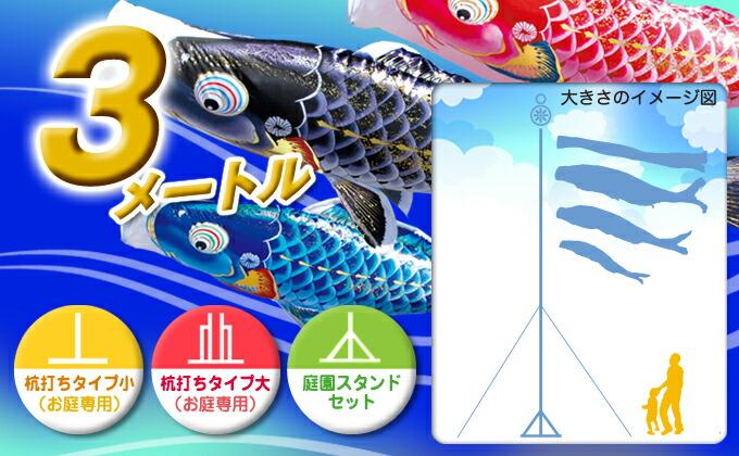 黒鯉のサイズ3m