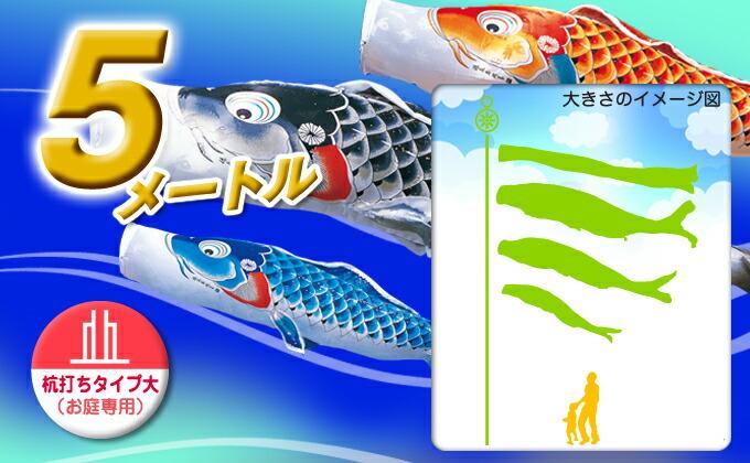 黒鯉のサイズ5m