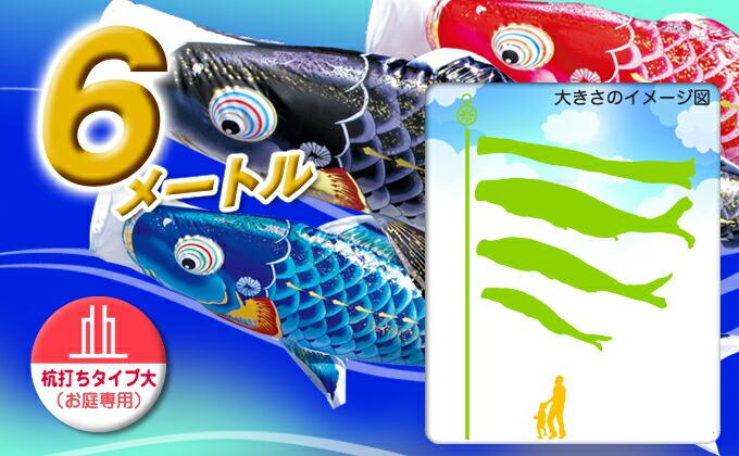 黒鯉のサイズ6m