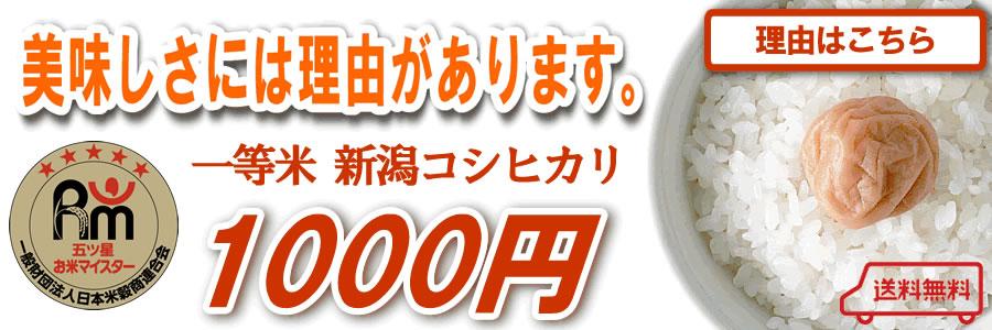 お試し1000円 新潟産コシヒカリ